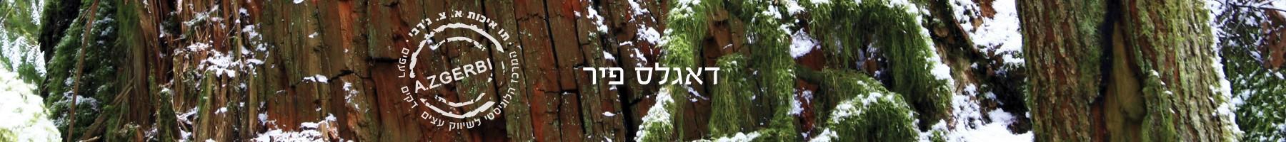 עץ דאגלס פיר