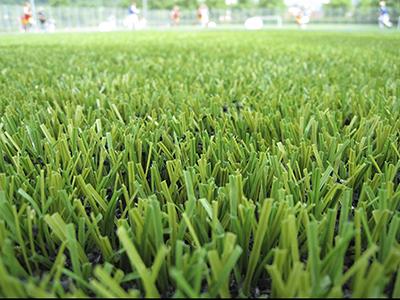 דשא סינטטי ישירות מהיבואן אל הצרכן