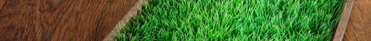 דשא סינטטי מדגם קינג