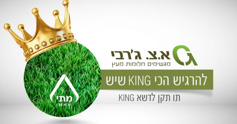 דשא סינטטי מסדרת KING