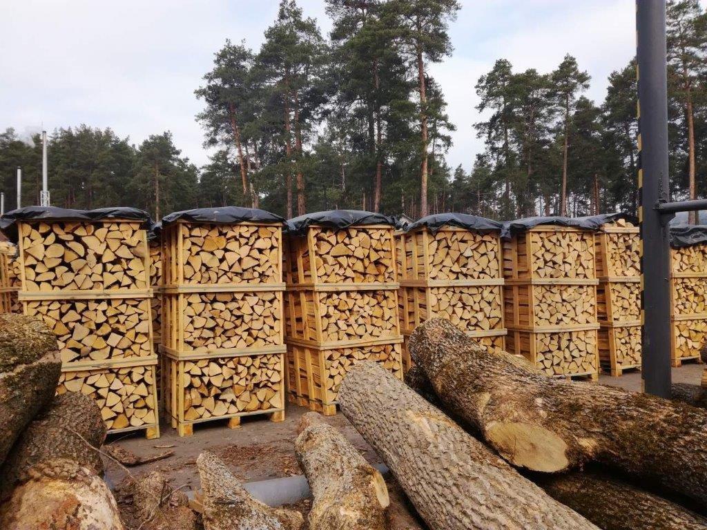 עצים להסקה במבצע