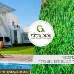 עיצוב הגינה עם דשא סינטטי