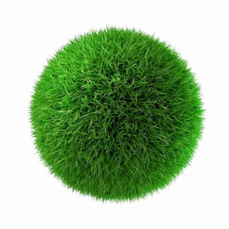 דשא סינטטי– כמה זה עולה?