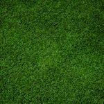 דשא סינטטי הוא מעיין מרבד מלאכותי